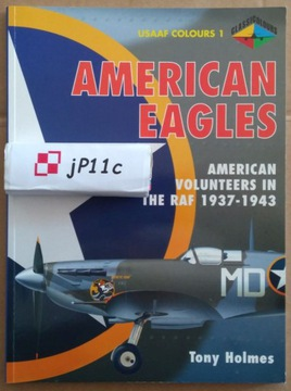American Eagles. US Volunteers in RAF POLECAM! доставка товаров из Польши и Allegro на русском