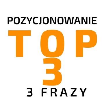 ROCZNE POZYCJONOWANIE 3 fraz do TOP 3 доставка товаров из Польши и Allegro на русском