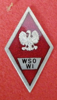 Знак WSOWI доставка товаров из Польши и Allegro на русском