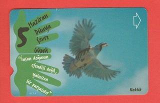 ТУРЦИЯ фауна птицы góropatwa красная доставка товаров из Польши и Allegro на русском