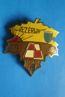 Odznaka Rezerwa 86-88.Jesień.Wojska OPK. Klon доставка товаров из Польши и Allegro на русском