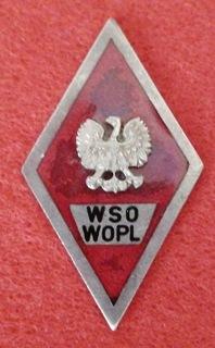 Знак WSOWOPL доставка товаров из Польши и Allegro на русском