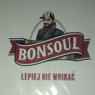 BONSOUL LEPIEJ NIE WNIKAĆ UNIKAT! TETRIS Laikike1  доставка товаров из Польши и Allegro на русском