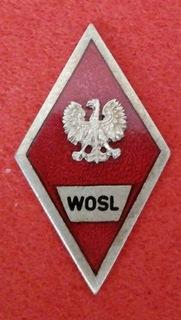 Знак WÓSŁ доставка товаров из Польши и Allegro на русском