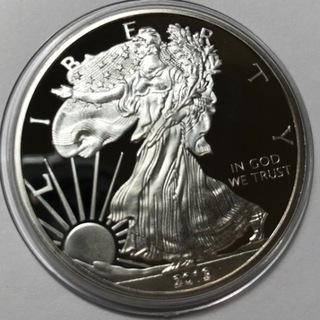 Silver Dolar - kopia доставка товаров из Польши и Allegro на русском