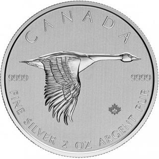 Kanada 2020 - Gęś Ag9999 2 oz BU доставка товаров из Польши и Allegro на русском