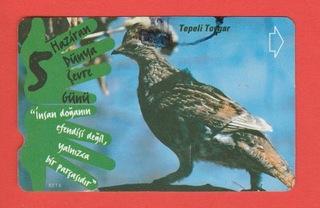 ТУРЦИЯ фауна птицы dzierlatka доставка товаров из Польши и Allegro на русском