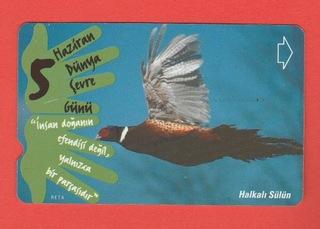 ТУРЦИЯ фауна птицы фазан доставка товаров из Польши и Allegro на русском