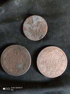 Монета доставка товаров из Польши и Allegro на русском