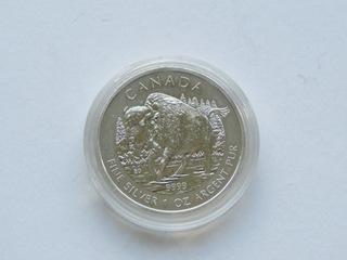 Kanada - 5 $ 2013, Bizon,  1 uncja Ag доставка товаров из Польши и Allegro на русском
