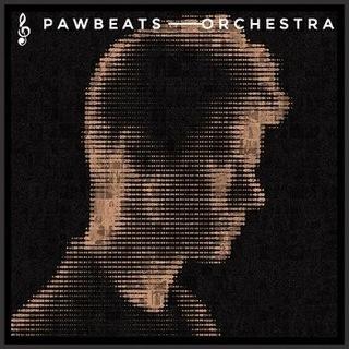 Pawbeats Orchestra доставка товаров из Польши и Allegro на русском