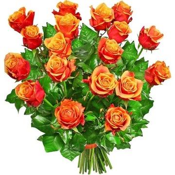 Kytica SPLENDOR - donáška kvetov Poczta Kwiatowa