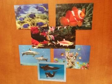 3D FISH SET 6 ks