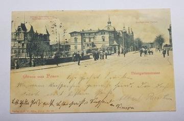Poznań Zoo ThiergartrArtstrasse 1909