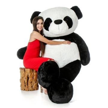 Veľký plyšový medveď GIGANT PANDA, 200 cm