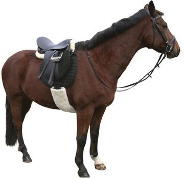95cm umývateľný ochranca pre koňa