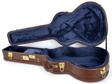 Artmg Casual Guitar Case Phoenix-Cl RG