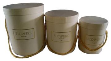 Kvetinová krabička Biela darčeková krabička Kvety 3 ks