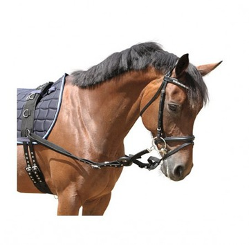 Chodcov s kolesámi pre koňa plný stołów kantár