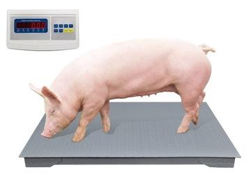 Elektronická mierka 1x1.2 pre poľnohospodárske ošípané 1,5 t