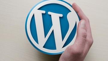 Wordpress Developer + certifikát