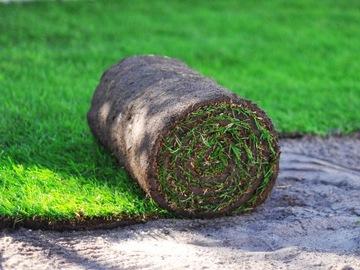 PREMIUM váľaná tráva - váľaný trávnik - 40m2