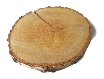 Hit suché drevo plátky brezové disky 28-33 cm