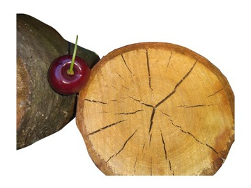 Drevo na fajčenie a grilovanie ovocných čerešní