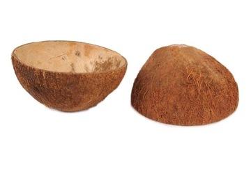 Coconut Shell Coconut Bowl s vlasmi 11 cm