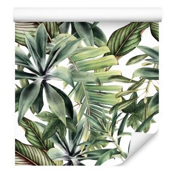 Tapety z prírody tropické banánové listy z kuchyne