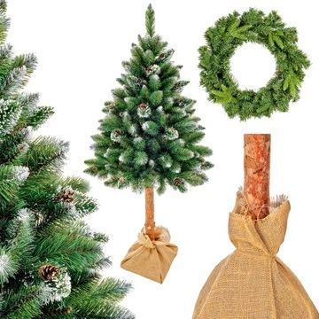 Vianočný stromček na trupu Diamond Pine Montana 160cm