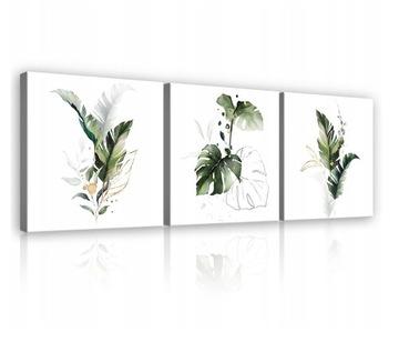 Obrázok pre obývaciu izbu listy monstera biely moderný