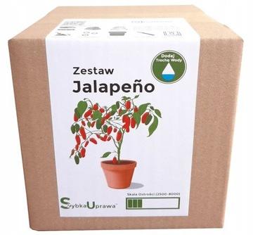 Sada na pestovanie papriky Chili Jalapeno - papriky