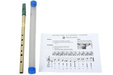 Feadoge Flatleet D Brass + Case + Guide