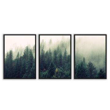 Sada triptychových plagátov v rámovanom obrázku LESNÉ HORY