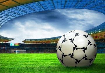 Фотообои 3D футбольный мяч по размеру стадиона
