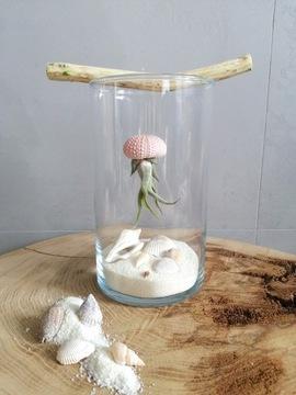 МИНИ тесьма медузы в стекле - своими руками