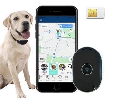 CALMEAN Pet Tracker Mini + S / M GPS ошейник для Собаки