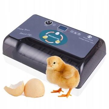 Инкубатор до 12 яиц. Автоматический инкубатор.