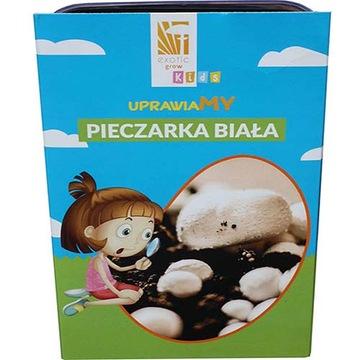 ГРИБЫ НАБОР белых грибов - выращивание для детей