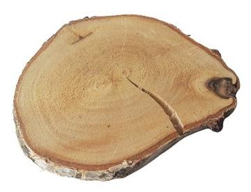 HIT Ломтики дерева, кольца деревянные, береза 8-12 см.