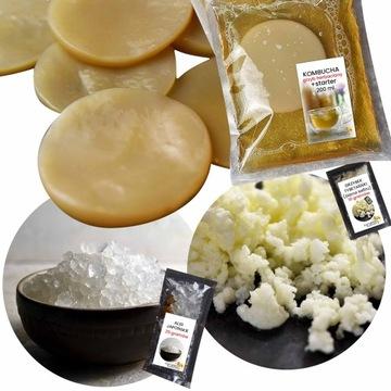 Комбуча + кефирное зерно + японские водоросли + листочки