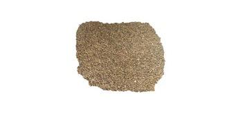 Фацелия голубая на промежуточные культуры 1 кг СЕМЕНА Зерно