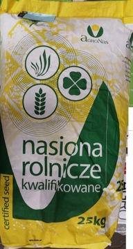 Семена озимого тритикале ТАДЕУС С1 50 кг приправленные