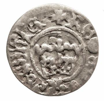Ян I Ольбрахт 1492-1501, полпенни кроны, Краков