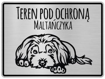 Табличка с информацией о собаках на мальтийском языке