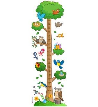 Наклейка для детей - Мера роста - Лес