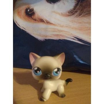 Figurka little pet shop Kot Shorthair