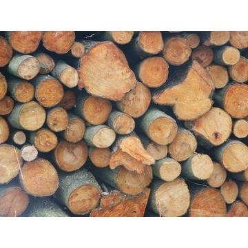 Sprzedam grube, suche, pocięte (35 cm) drewno opał