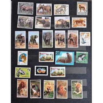 ssaki - mix znaczków